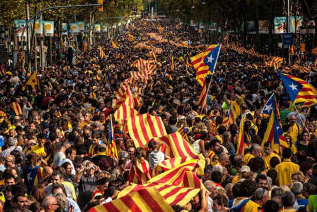Catalan Flags durning the celebration of Diada