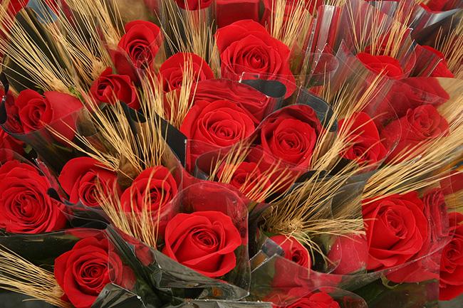 Le rose di Sant Jordi a Barcellona